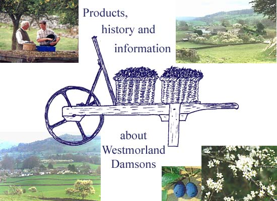 Westmorland Damson Association - Products, history and information about Westmorland Damsons